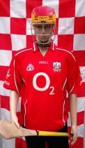 2004-2007 Cork GAA Official O'Neills Hurling Jersey (Adult Large)