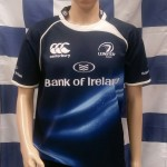 Leinster 2010-2011 Home