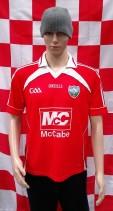 2010-2012 Louth GAA O'Neills Gaelic Football Jersey (Adult Medium)