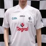 Kildare 2009-2011