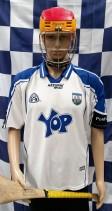 2008-2009 Waterford GAA Azzurri Hurling Jersey (Adult Large)