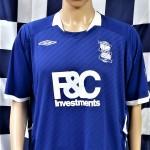 Birmingham City 2008-2009